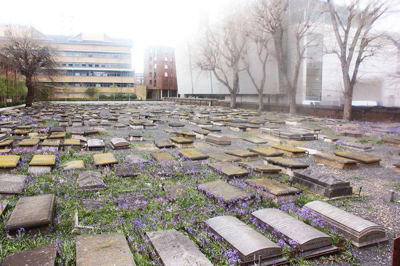 qmul image of Jewish Cemetery